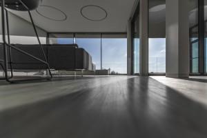 grindys namams